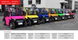 Automobile elettrica di mobilità della lunga autonomia, mini freno a disco idraulico dell'automobile elettrica