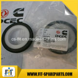 Dcec pour le joint avant de vilebrequin de 6BTA5.9 Cummins Engine /After le vilebrequin Seal3935959 3968562