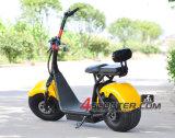 熱い販売の鉛酸蓄電池Citycoco Harley
