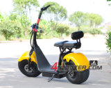 Batería de plomo vendedora caliente Citycoco Harley
