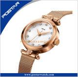 Relógio de senhoras de Sinple com a fita de aço inoxidável ou cinta de couro genuína para sua opção
