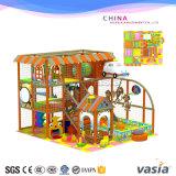 Campo de jogos interno da série do Aqua de Vasia para a venda barata