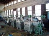 Secador industrial do vácuo