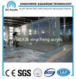 Personalizado grande de acrílico transparente túnel acuario de acrílico Proyecto Túnel