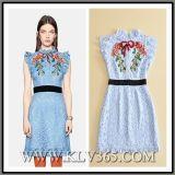 Späteste Kleid-Entwurfs-Dame-Form-Sommer-Spitze-reizvolles wulstiges süsses Sleeveless Kleid