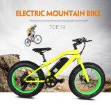 Bici elettrica della gomma grassa per il ragazzo come regalo