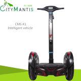 Scooter électrique/scooter de scooter d'équilibre de scooter/individu d'équilibre/deux roues