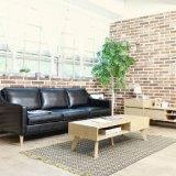 Soggiorno per il salotto di stile nordico e sofà di cuoio del caffè