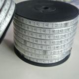 Doppio nastro esterno 110V/220V di RGB LED dell'indicatore luminoso di striscia di riga LED