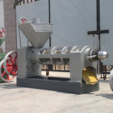 Expulsor do petróleo de sementes do Jatropha na venda