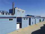 Fabriek twintig voor Alginate van het Natrium TextielRang