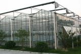 Лучше всего Sainpoly стекла выбросов парниковых газов для сельского хозяйства/коммерческого использования