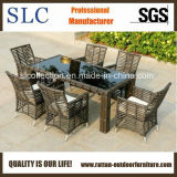 Migliore mobilia esterna di vendita del rattan (SC-B8960)