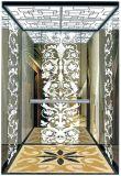 Vvvf 독일 드라이브 (RLS-248)를 가진 기계 Roomless 전송자 엘리베이터