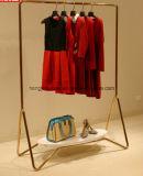 Шкаф пальто утюга, стеллаж для выставки товаров, стойка индикации