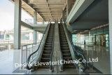 Escalator extérieur pour des lieux publics