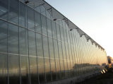 الصين [فكتوري بريس] زجاجيّة دفيئة لأنّ بندورة ينمو