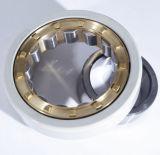 Kundenspezifisches Isolierrollenlager verwendet auf Motor und elektrischer Maschine