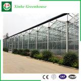 Serres chaudes en verre d'agriculture pour des tomates/fleurs
