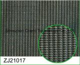 Динамики ячеистой структуры ткани динамика динамика (ZJ210)