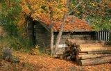 [150إكس900] يعيش غرفة طبيعيّ خشبيّة حبة خشبيّة نظرة خشب قراميد