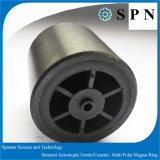 高品質のモーターのための強い亜鉄酸塩の磁石モーター