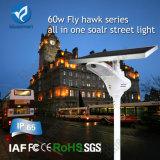 Lámpara solar del jardín de la luz de calle del LED 60W con el sensor de movimiento
