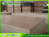 Linqing Chengxin Bintangorの合板のOkoumeによって鋸で挽かれる材木またはポプラのコアOkoume