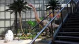 Piante e fiori artificiali della palma Gu-SL-31327 dei Cochi