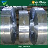 Senhora Q195-Q235 do preto do produto da qualidade da fábrica a melhor que corta a tira de aço laminada a alta temperatura da bobina de aço na bobina