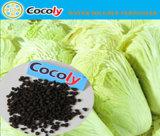 Cocoly componentes orgânicos Nutrição Água de distribuição de fertilizantes solúveis