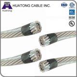 Línea de transmisión estándar de potencia de ASTM conductor de AAC