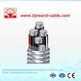 ABC/PVC/XLPE/ACSR/AAAC/AAC /Overhead/Aluminum/Aerial связало кабельную проводку