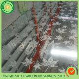 オンラインショッピングミラーの装飾的なショーケースのための多彩なエッチング304のステンレス鋼シート