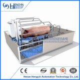 Животноводство механизма оборудование Pig Farrowing ящик с Pig планками пола