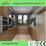 パターンによって浮彫りにされる花のアクリルの食器棚のドア(ZH)