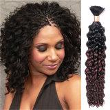 Uitbreiding Twee van het Menselijke Haar van de Kleur van Ombre de Massa van het Menselijke Haar van de Kleur van de Toon, het Menselijke Haar van Pruiken (B-12)