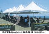 Tent (3019)