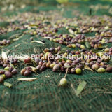 جديدة [ب] يجمع حصاد شبكة زيتونيّ اللّون مع [أوف] ([يهز-هون01])