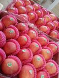 Fresh Rocky Candy coeur FUJI Apple