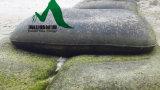 Geotessuto ad alta resistenza Geobag usando per l'erosione di spiaggia