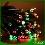 정원 훈장 100개의 관을%s 가진 다채로운 태양 작은 LED 크리스마스 끈 빛 결혼식 Parrty 스포트라이트