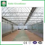 De Serres van het Blad van het Polycarbonaat van de Tunnel van de tuin/van de Landbouw voor het Groeien van de Groente/van de Bloem