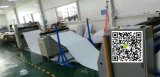 PA2512 P526498 Baldwin Luftfilter, Gleiskettenfahrzeug-Filtereinsatz Af25287K 1033496