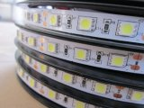 Tira flexible los 60LEDs/M de la C.C. SMD5050 RGB LED de la alta calidad 12V/24V