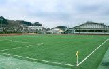 미식 축구 경기장 비 구멍 메우기 잔디 (Y60)를 위한 인공적인 뗏장
