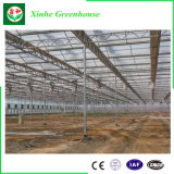 Tipo estufa de vidro de China Venlo para o vegetal e as flores