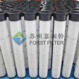 Forst ha pieghettato le cartucce di filtro lunghe dalla polvere della polvere di impulso