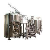 Systeem van de Apparatuur van het Bierbrouwen van het huis het Mini300L