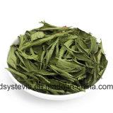 Poudre normale 80%~98% Stevioside d'extrait de Stevia d'édulcorant
